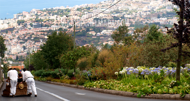 Carreiros do Monte - Madeira