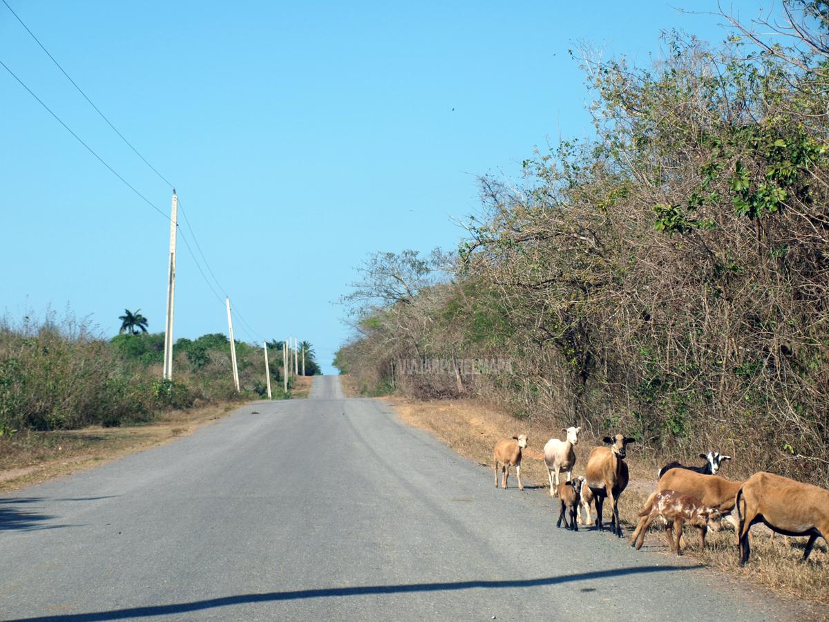 conducir en Cuba estado de las carreteras